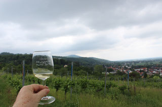 Weinprobe am Jahreszeiten regional erleben