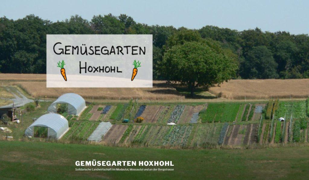 Gemüsegarten Hoxhohl